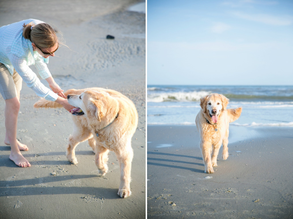 Folly-Beach-Pet-Portraits_0021